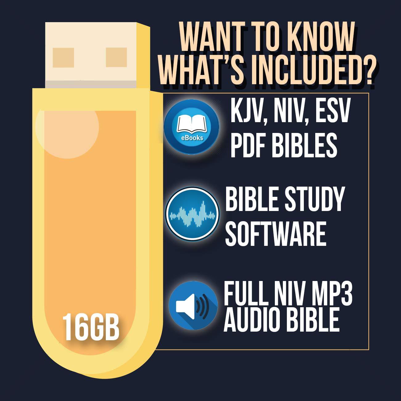 Kjv bible free download for windows xp